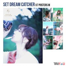 Set 16 - Dream Catcher