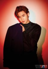 Poster - Suho (EXO) [M-1345]